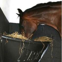horse-hay-bar-57248-13046_medium