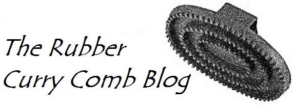 therubbercurrycomblogo
