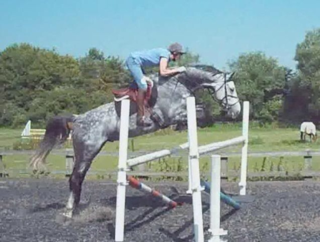 What Makes A Good Jumper?